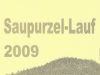 Urkunde Saupurzellauf 2009
